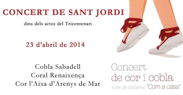 Concert-de-Sant-Jordi-2014g