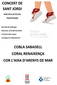 Concert-de-Sant-Jordi-2014p
